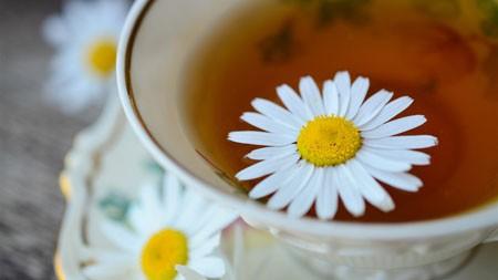 夏天,白,菊花,茶叶,茶杯高端桌面精选 3840x2160