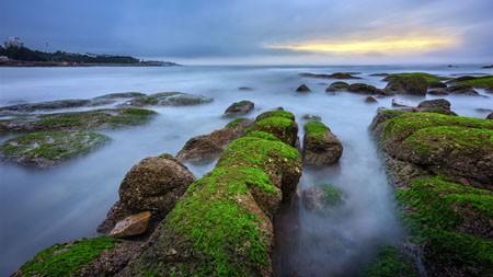绿色,苔藓,海滩,珊瑚礁,早晨高端桌面精选 3840x2160