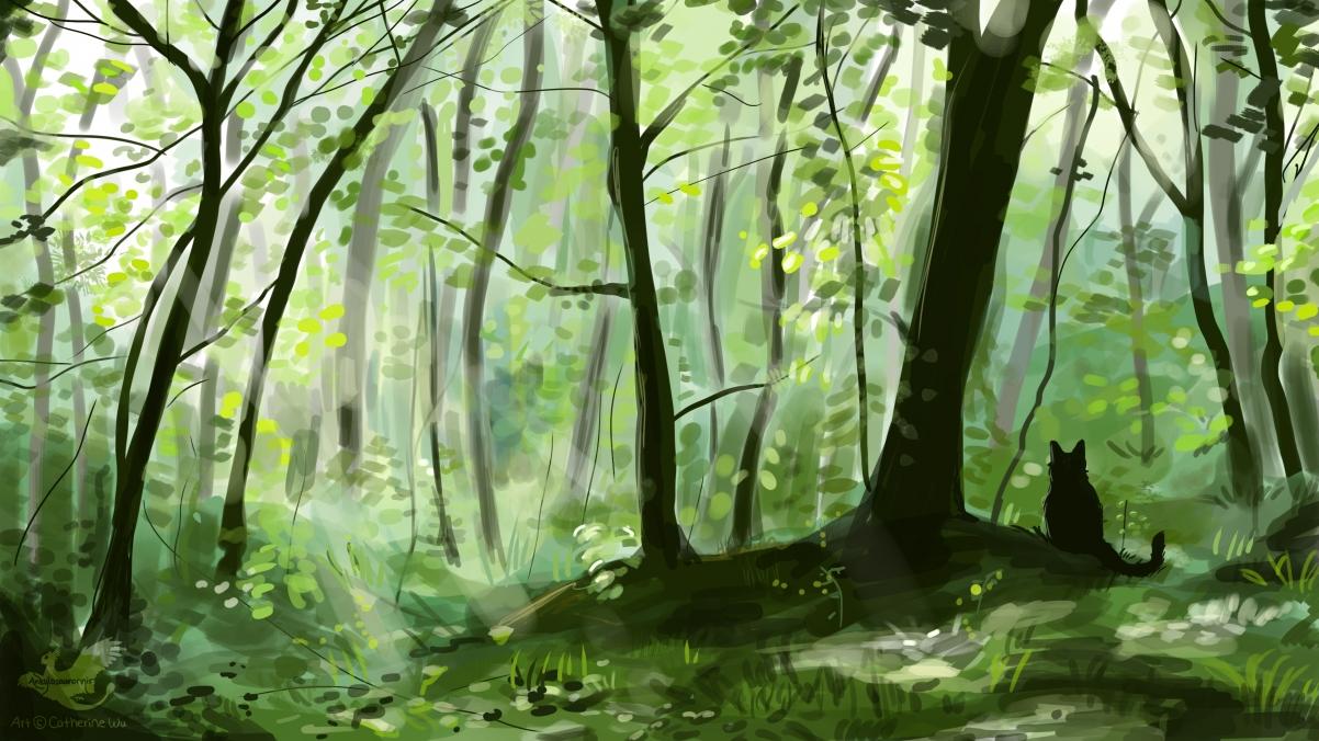 森林树林小黑猫绘画4K高端电脑桌面壁纸