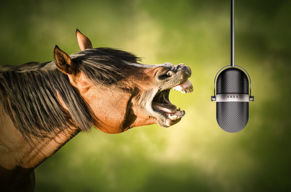 马 麦克风 唱歌 创意动物4k高端电脑桌面壁纸