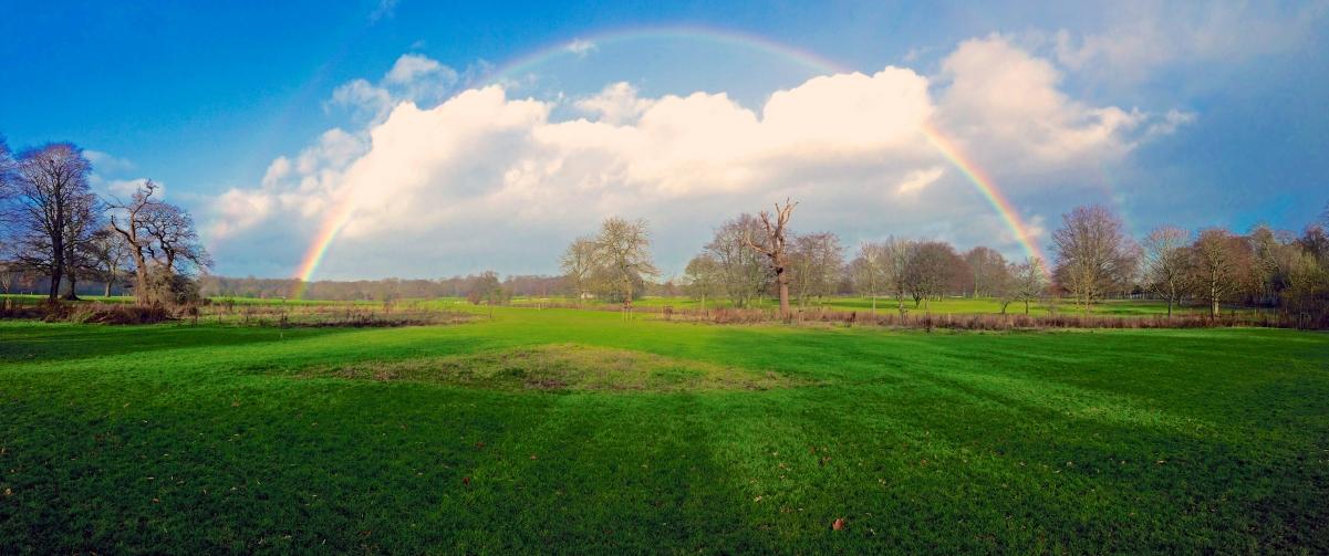 彩虹 蓝色天空 绿色草地 公园 3440x1440风景高端电脑桌面壁纸