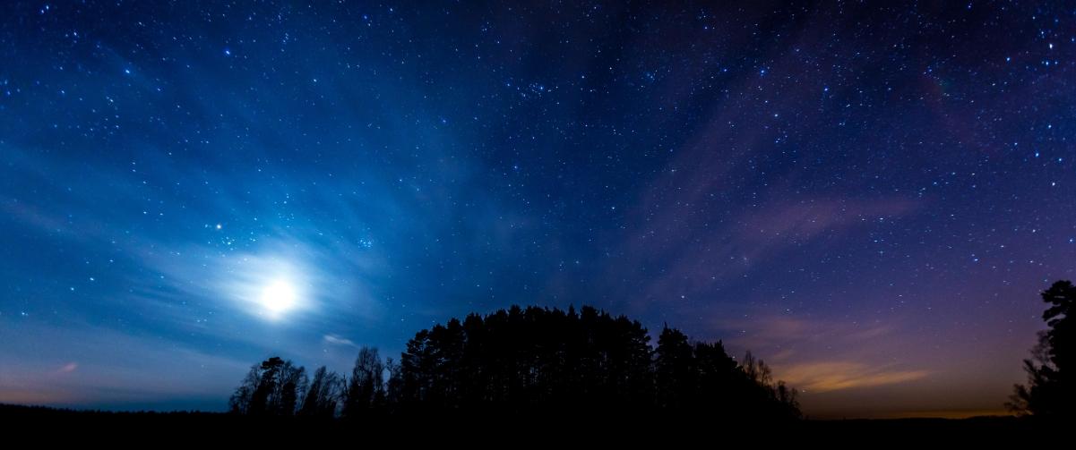 夜晚星空树林3440x1440风景高端电脑桌面壁纸