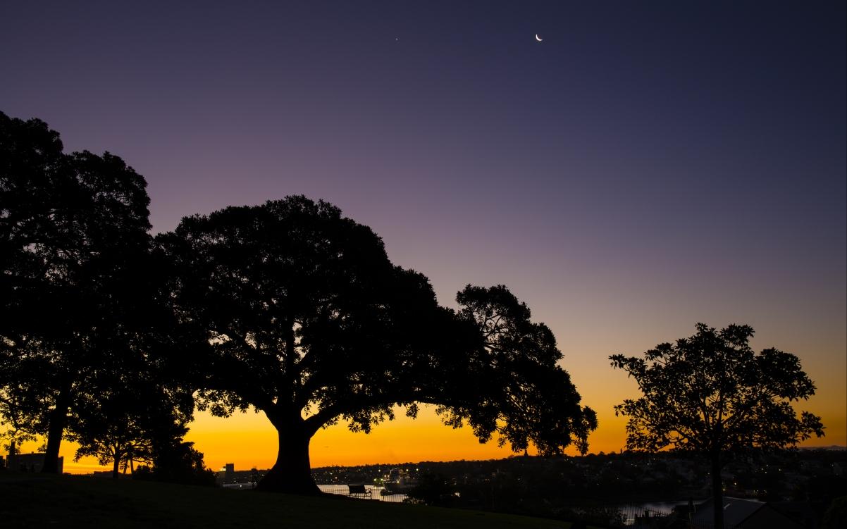 黄昏时分的悉尼4K风景超高清壁纸精选