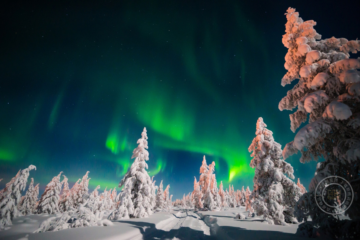 天空 晚上 道路 树木 北极光 冬季 雪 星空 4K高端电脑桌面壁纸