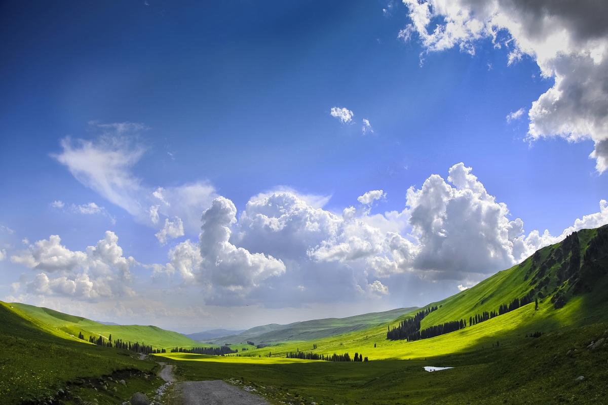 美丽的蓝天草原新疆4K风景高端电脑桌面壁纸