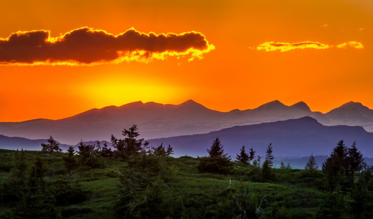 日落 树 山 自然 太阳 天空 5K风景高端电脑桌面壁纸