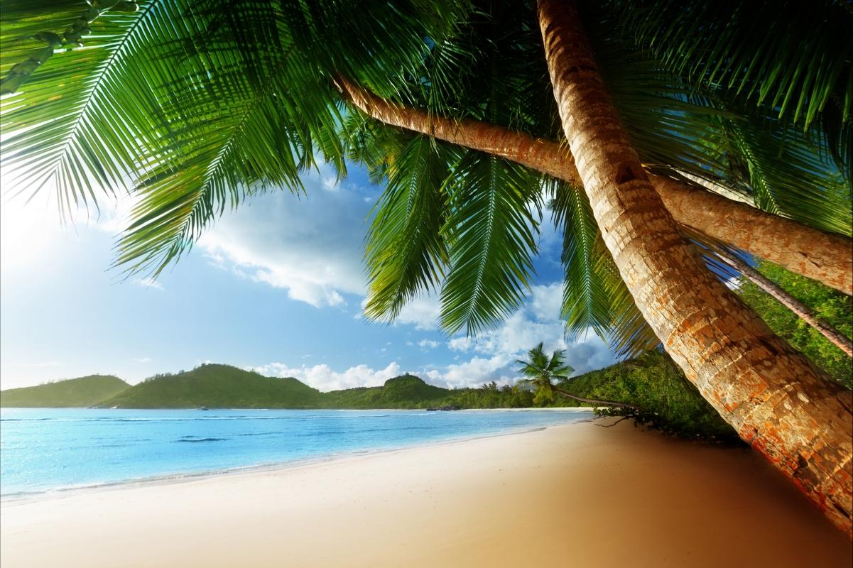 自然,天空,云,椰树,海边4K风景图片高端电脑桌面壁纸