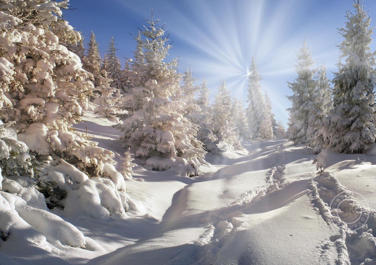 冬季雪风景4K高端电脑桌面壁纸
