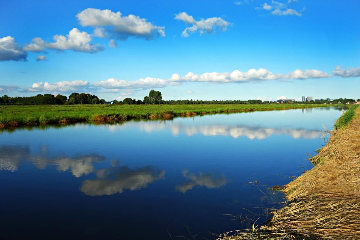 荷兰风景 圩田 草甸 4k风景图片