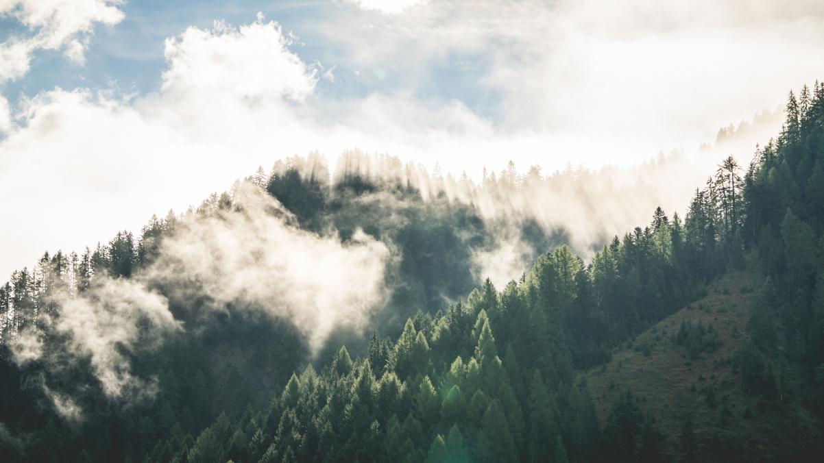 美丽的早晨山林雾风光4k高端电脑桌面壁纸