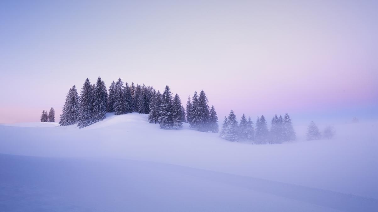 瑞士冬季 雪 树美丽冬天风景4k壁纸3840x2160