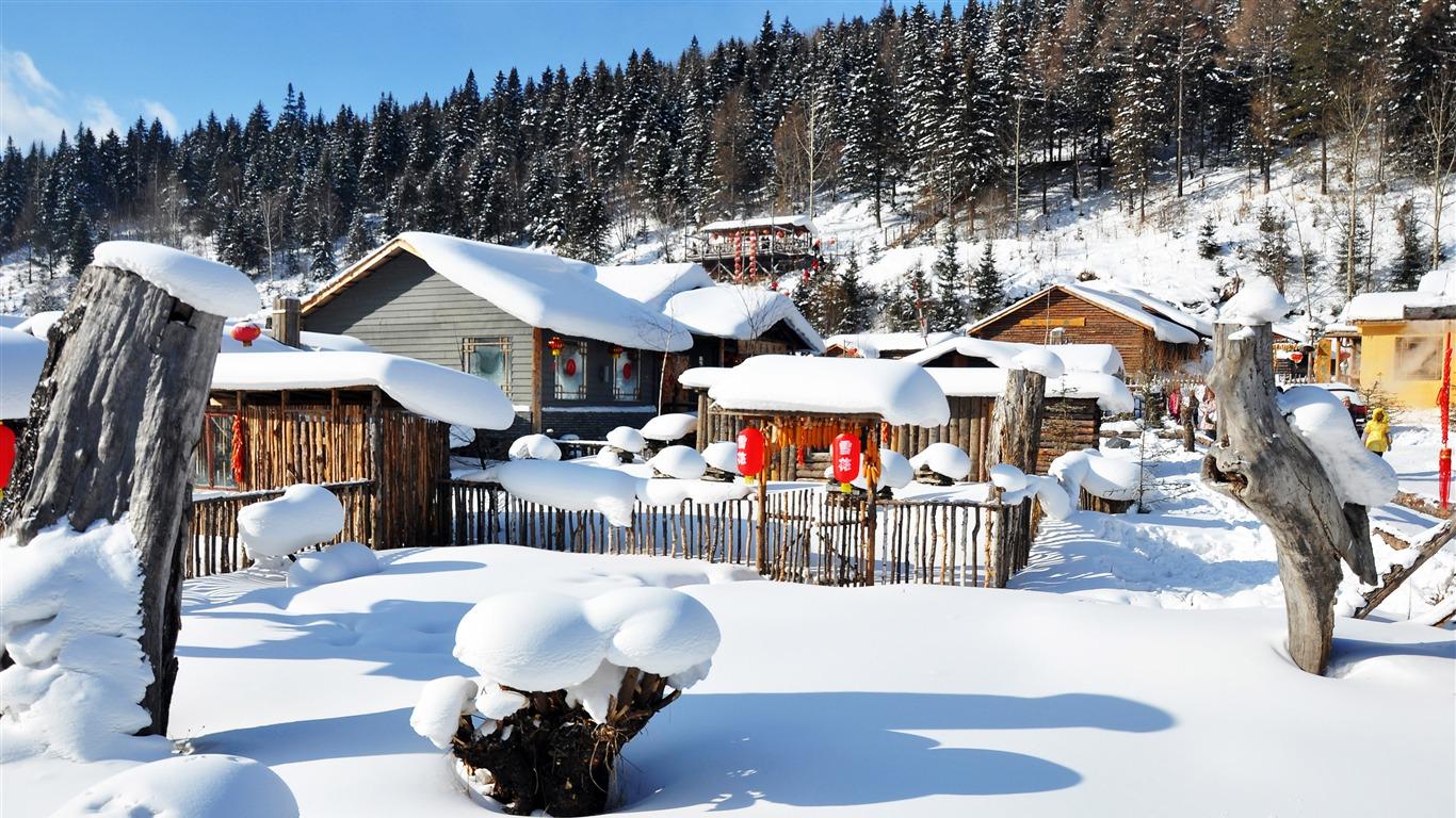 阳光,冬季,森林,村庄,雪,景观高端桌面精选 3840x2160