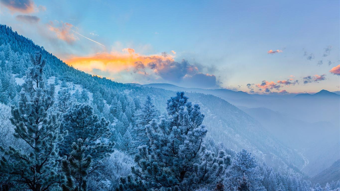 冬天,森林,树木,雪山,雾高端桌面精选 3840x2160