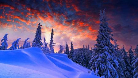 冬天的雪景百变桌面精选高清壁纸