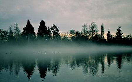 河流树木雾倒影风景高端桌面4K+高清壁纸图片