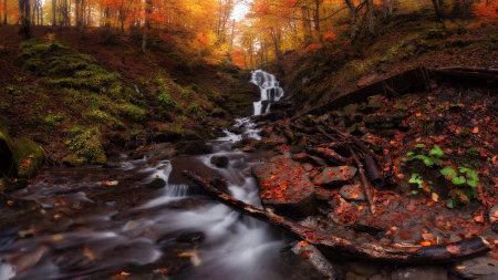 秋天的树林和溪流高端桌面4K+高清壁纸图片