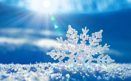冬天的雪花和阳光高端桌面4K+高清壁纸图片