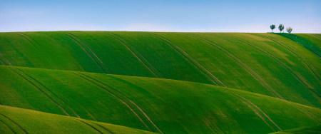 绿色起伏的山丘百变桌面精选高清壁纸