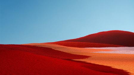 Microsoft Surface橙色草原风景高端桌面4K+高清壁纸图片