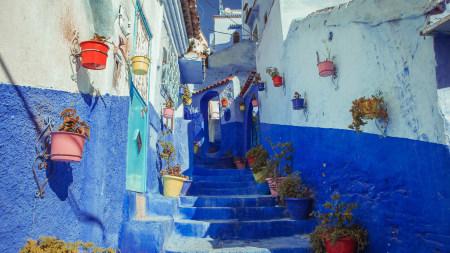 蓝色油漆房子和阶梯高端桌面4K+高清壁纸图片