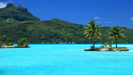 热带岛屿上的棕榈树百变桌面精选高清壁纸