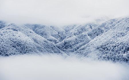 大雪覆盖的山林高端桌面4K+高清壁纸图片
