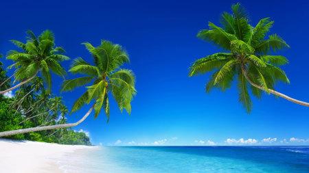 美丽的热带海滩风景高端桌面4K+高清壁纸图片