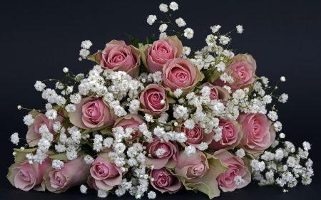 玫瑰花束极品壁纸推荐高清壁纸