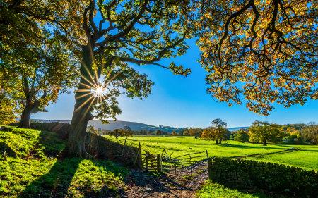美丽的英格兰自然乡村风光高端桌面4K+高清壁纸图片