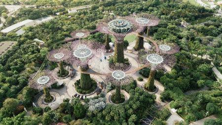 新加坡滨海湾花园超级树高端桌面4K+高清壁纸图片