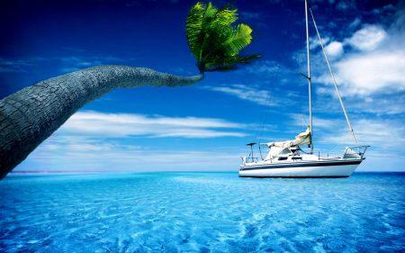 蓝色大海上的游艇与棕榈树高端桌面4K+高清壁纸图片