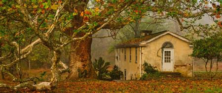 秋天梧桐树下的老房子极品游戏桌面精选4K+高清壁纸