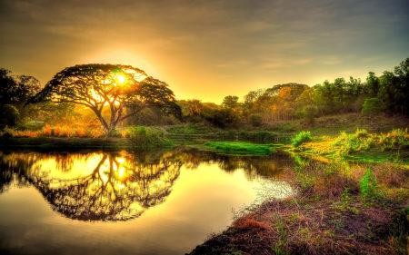 日落池塘树木风景百变桌面精选高清壁纸