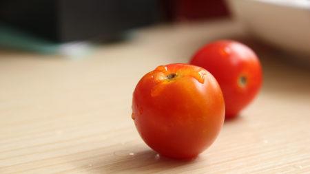 番茄极品壁纸推荐高清壁纸