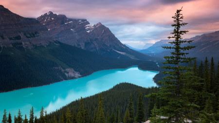 加拿大班夫国家公园梦莲湖美景高端桌面4K+高清壁纸图片