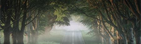 薄雾弥漫的公路高端桌面4K+高清壁纸图片
