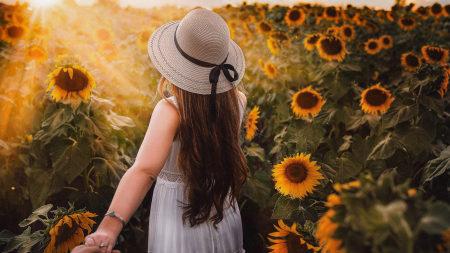 向日葵花丛中美女背影极品游戏桌面精选4K+高清壁纸