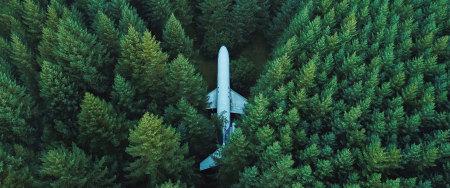 丛林里的飞机高端桌面4K+高清壁纸图片