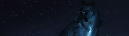 狼插画高端桌面4K+高清壁纸图片