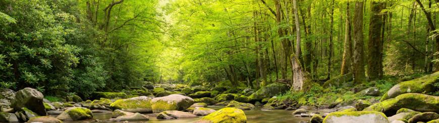 山涧溪流高端桌面4K+高清壁纸图片