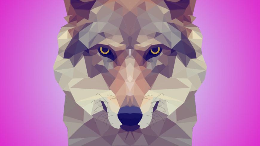 狼插画极品游戏桌面精选4K+高清壁纸